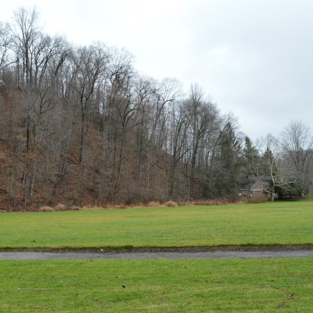 ellison park hill